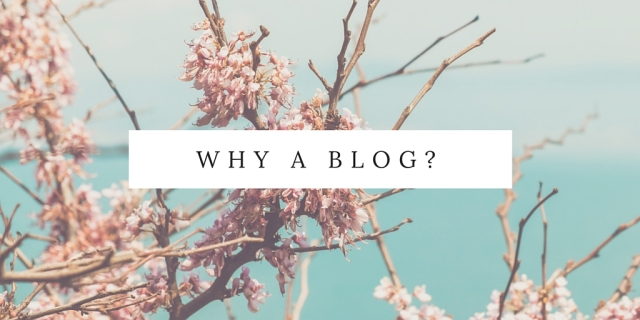 Why a blog-