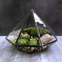 glass-terraium